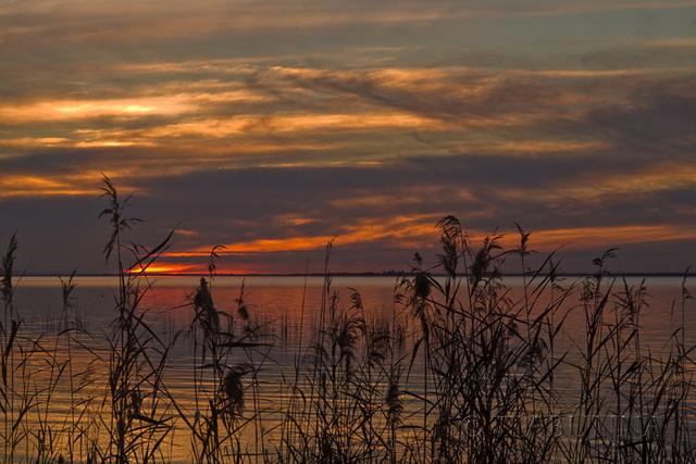 Lake Albert Sunset - Day 2 #2