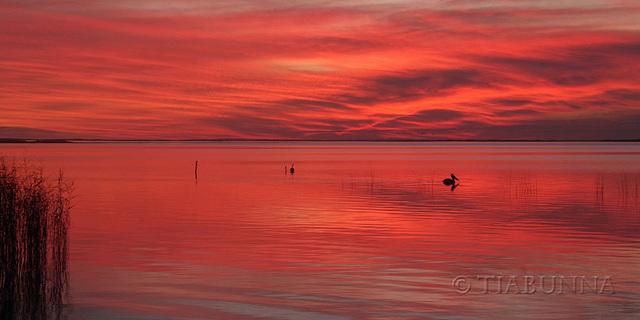 Lake Albert Sunset - Day 2 #3