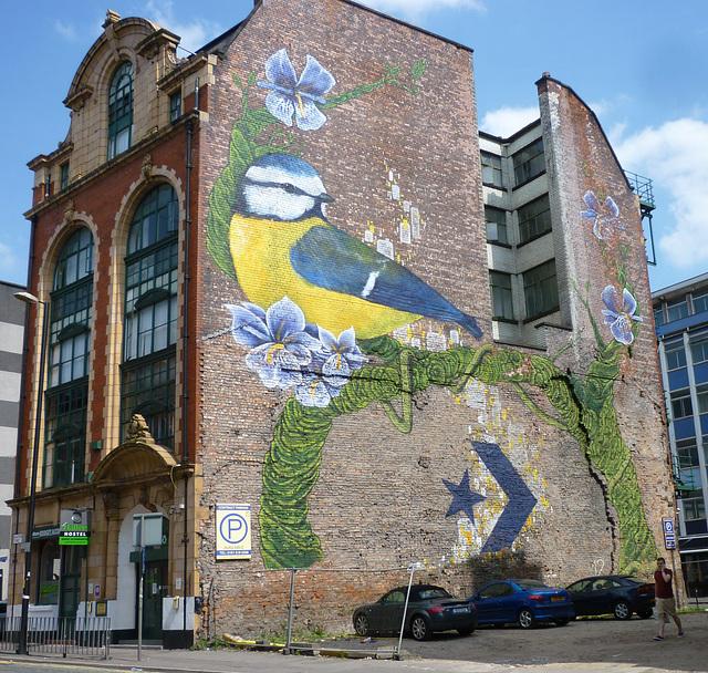 Bird Grafitti