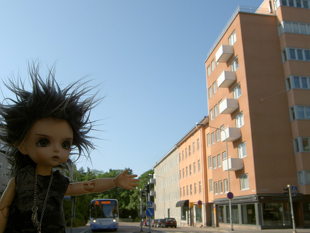 Deimos at the house where I lived as a child