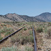 Western Pacific Reno extension (0277)
