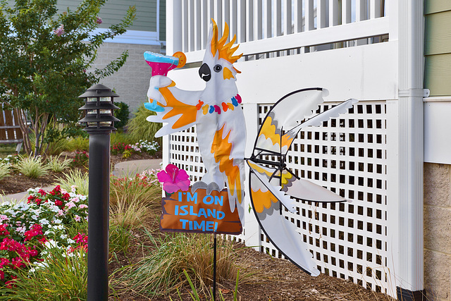 On Island Time – Piney Point Road, Piney Point, Maryland