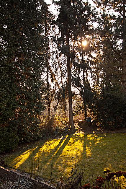 20110222 9845RWw Morgensonne