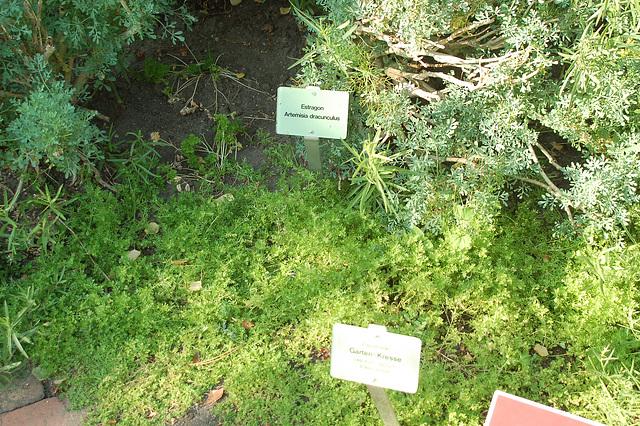 Planten und Blomen