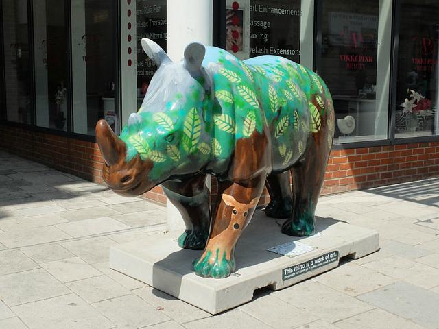 Go! Rhinos_019 - 14 July 2013
