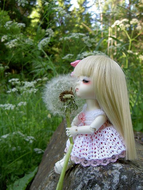 Lumi and the dandelion seedpod