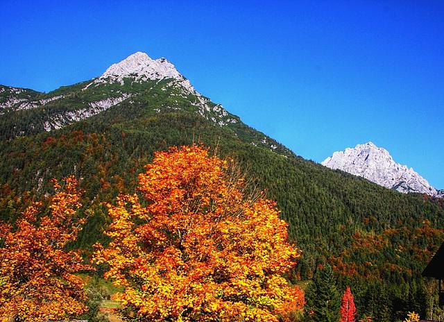 Tirol - Hochfilzen