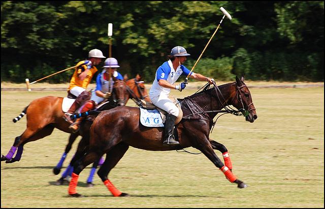 Polo (West Wycombe) (1)