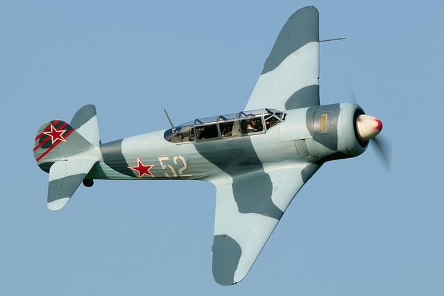 Yak - 11