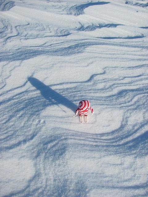 Domo skiing on a frozen lake