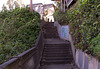 SF Ashbury Heights  (0261)