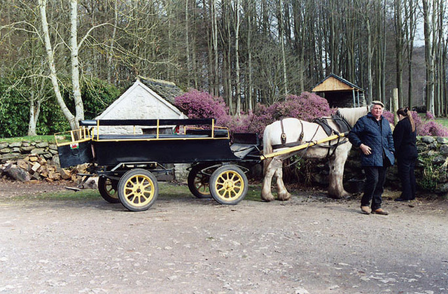 Horse and Cart at the Museum of Welsh Life, 2004