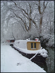 snow-wrapped boat
