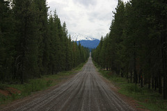 Windigo Pass Road and Mt. Bailey