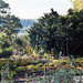 The Heather Garden in Fort Tryon Park, Oct. 2006