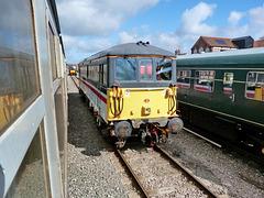 'Selhurst' in Norfolk