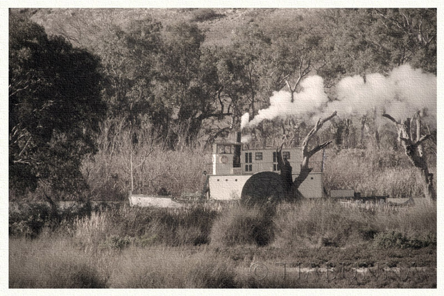 Small Murray River paddle steamer