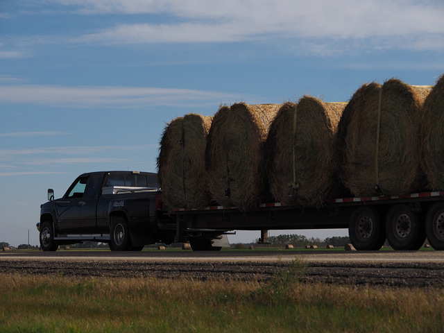 Hay Bales Going from Point A to Point B
