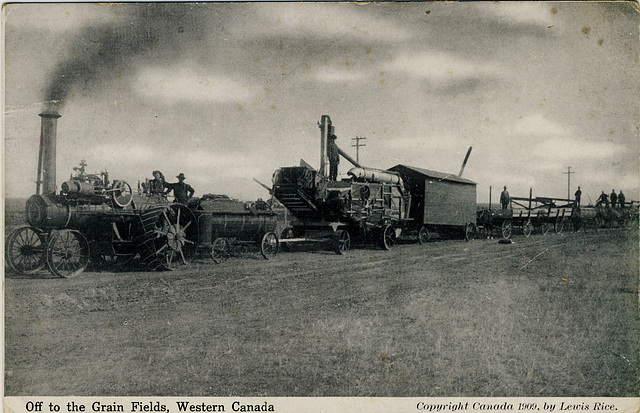 Off to the Grain Fields, Western Canada