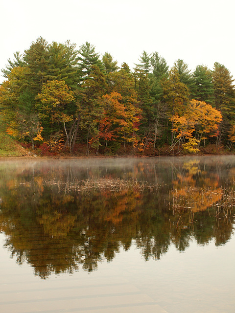 Ossipee River reflections