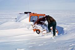 Blizzard aftermath #2