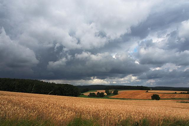 Gewitterwolken über dem Getreideland ~