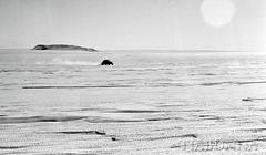 """VW """"Antarctica 3"""" heading across sastrugi"""