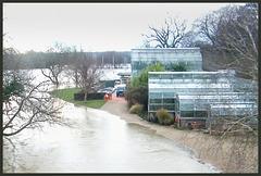 flood at Oxford Botanical Gardens