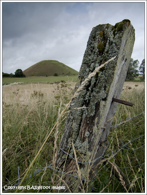 fence post with silbury hill