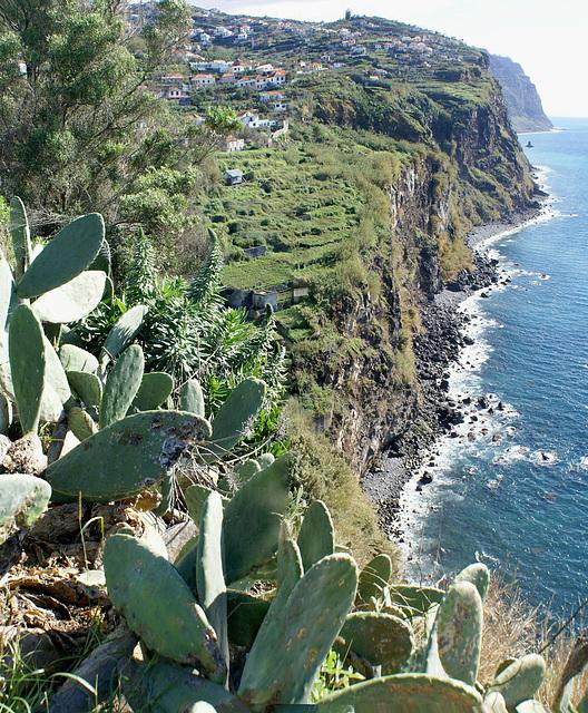 Madeira. Nahe Ribeira Brava. Blick entlang der Süd-Küste nach Osten.  ©UdoSm