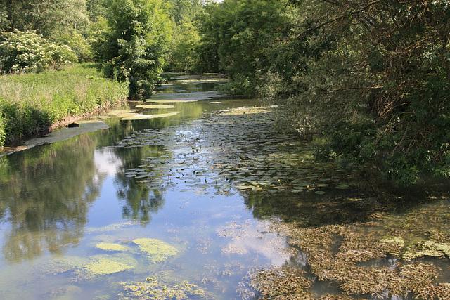 notre belle nature dans l'Indre