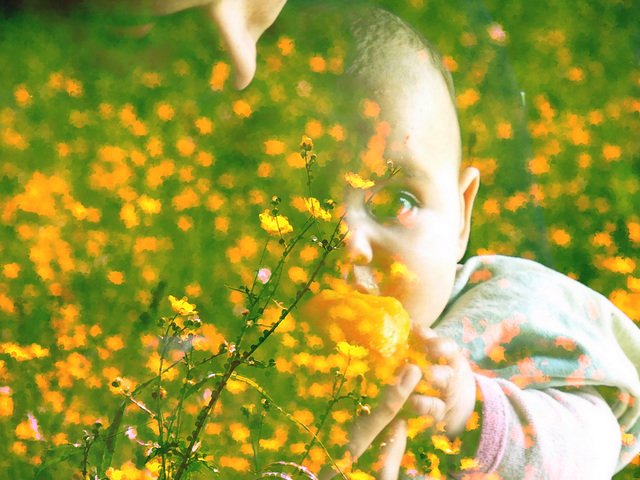 Chan de fleurs