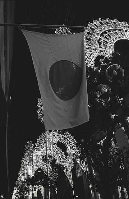 Luminarie 2010 - 21