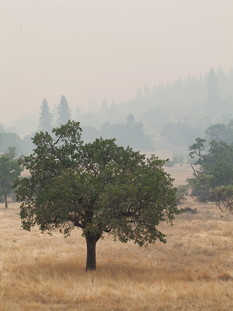 Smoky Southern Oregon from our Back Deck