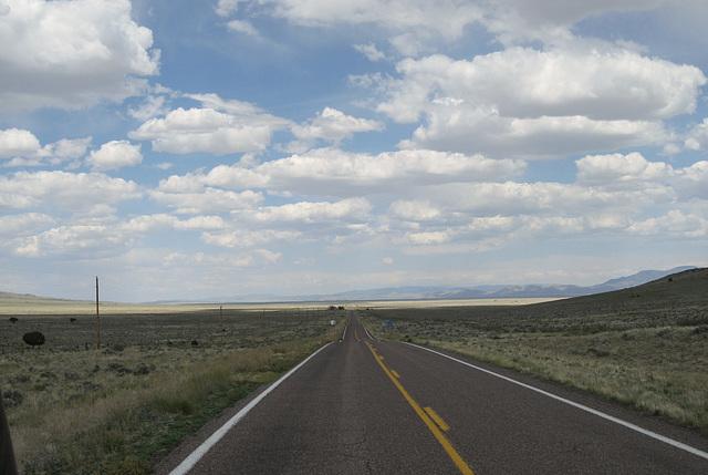 Horse Springs, NM (2343)