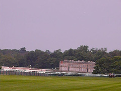 Course de chevaux à Chantilly