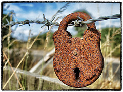 Barbed wire fence with padlock.