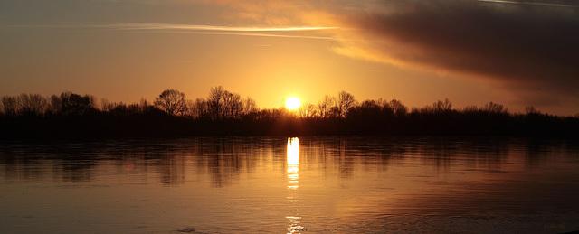 Levé de soleil entre Saumur et Angers ( au Thoureil)