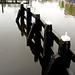 Rainy Rijn Day