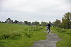 Trim 2013 – Path next to the river Boyne