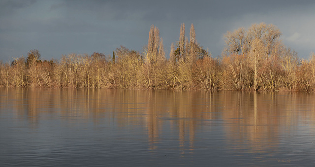 fin apres midi sur la Loire