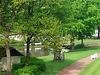 20130515 133Hw Park