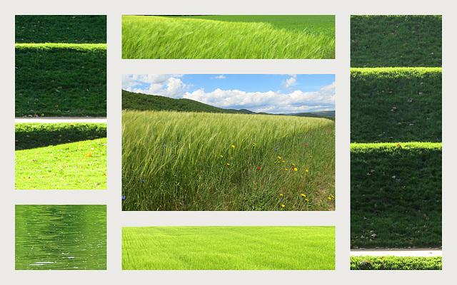 Mosaïque verte
