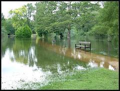 summer flood at University Parks