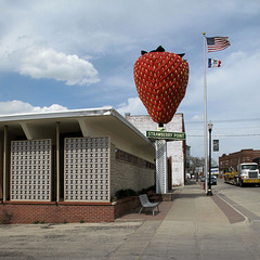 May pride swell forevermore the bosoms of the residents of the city of Strawberry Point, Iowa, when they see the world's largest strawberry out in front of their ultramodernistic City Hall.