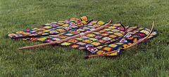 Bows on a Blanket at Ian and Katherine's Last Championships, May 2006