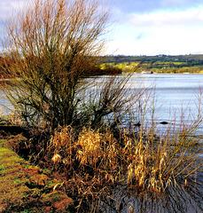 Lake Burwain.