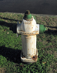 For all of you whose Earthly Purpose is to spend your days looking up pictures of fire hydrants on the internet, here's a 1983 Waterous for ya.