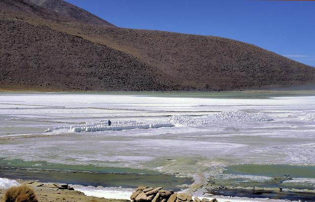 Bolivia #19