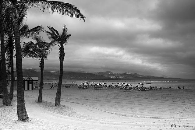 Playa de Las Canteras.B/N
